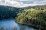 L'Ajpme organise pour ses adhérents un voyage dans les Vosges à la rencontre des acteurs et entreprises de la filière textile.